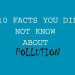10 FACTS YOU DID NOT KNOW ABOUT POLLUTION