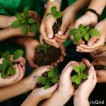 clean delhi green delhi